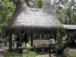 Churuata en la Isla Ratón
