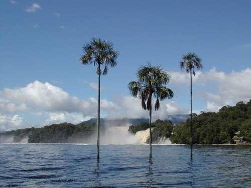 Laguna de Canaima