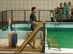 Entrenador de toninas