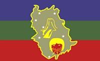 Bandera de Amazonas