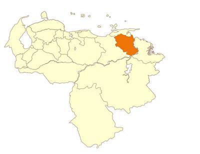 Monagas - Venezuela Tuya