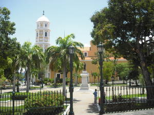 Plaza Bolívar y Catedral