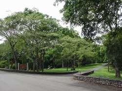 Entrada Parque La Llovizna