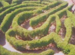 Vista aerea del laberinto