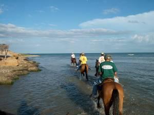 Paseo a caballo en la peninsula de macanao