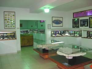 Sala del museo