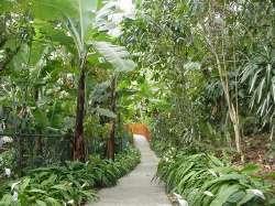 Jardín de Carrizales