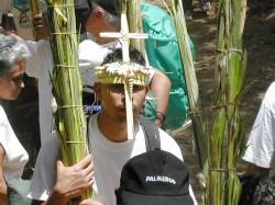 Cruz en la Cara en los palmeros de Chacao